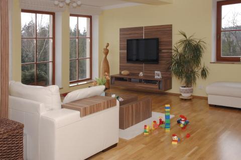 Living Room on Ob  Vac   Pokoj Je   E  En Imitac   Exotick   D  Eviny Makassar Cejlon